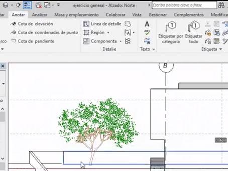 ¿Cómo generar tu propia familia de árbol con tu grafismo en planta y alzado?