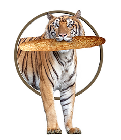 Diversi Foods stokbrood tijger
