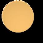 Rond_oranje.png