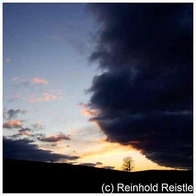 505 eiche gewitterwolken.jpg