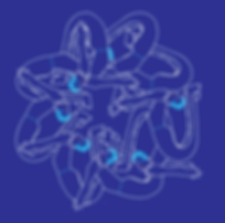 blue yoga for everyone.png