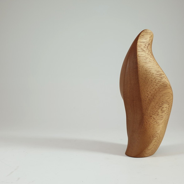 Experimental Form