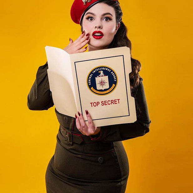 1950s Military Pinup