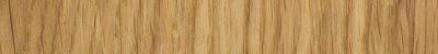 oak banner.png