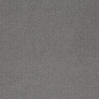 164.jpg