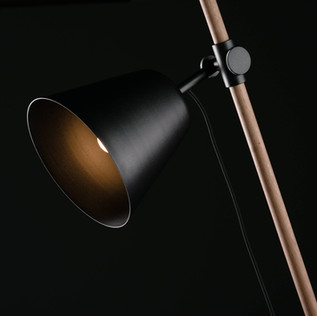 Insert Lamp