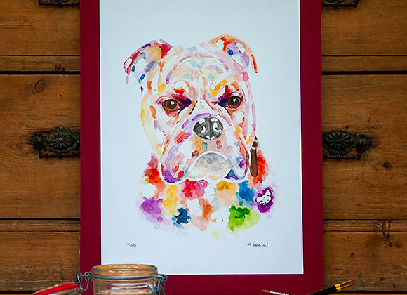 A3 Giclée Print - Old English Bulldog