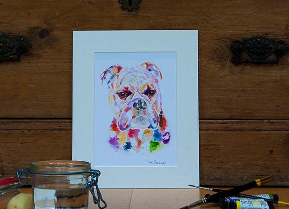 A5 Giclée Print - Old English Bulldog