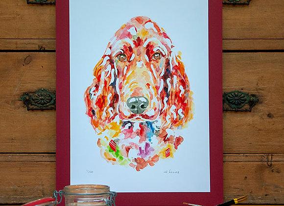 A3 Giclée Print - Irish Red Setter
