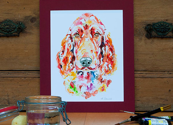 A4 Giclée Print - Irish Red Setter
