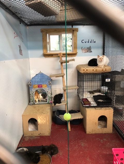 And houses and other perches