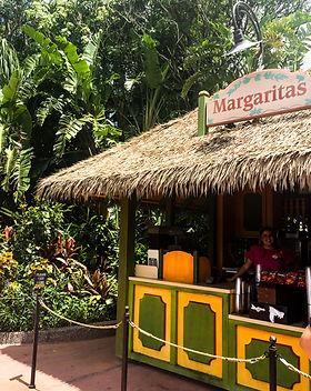 Bars - Epcot - Margarita Stand.jpg