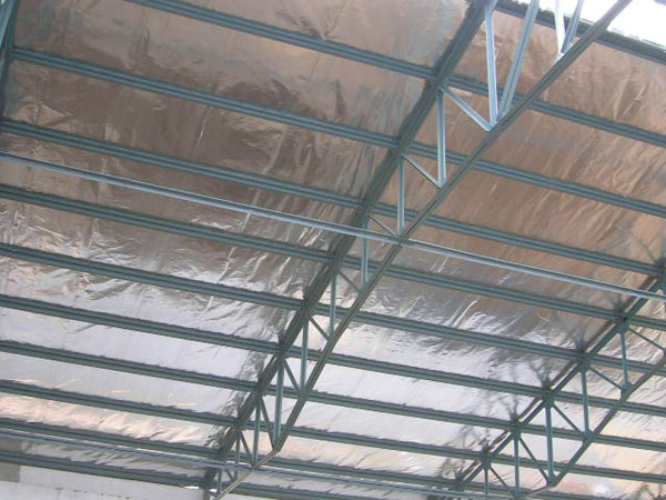 Insulation with Radiant Barrier