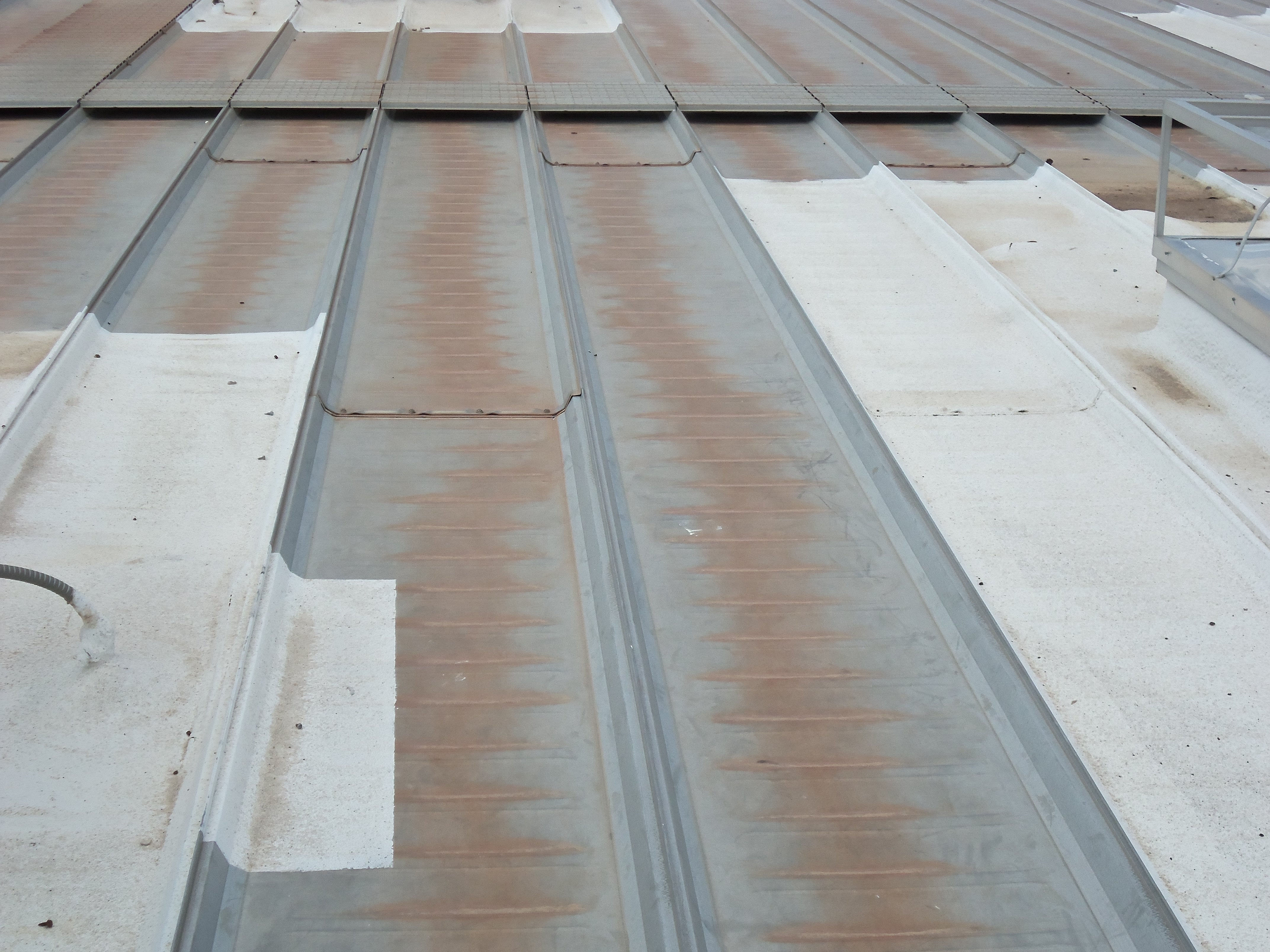 Metal Roof In Need Of Treatment