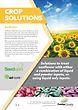 Crop Solutions SUNFLOWER 2020.jpg