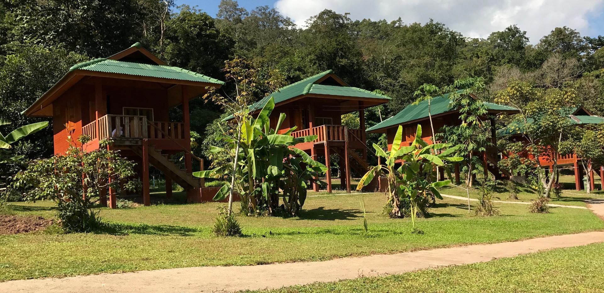 Thailand Yoga Holidays Destination Forest Meditation Center Accomodation