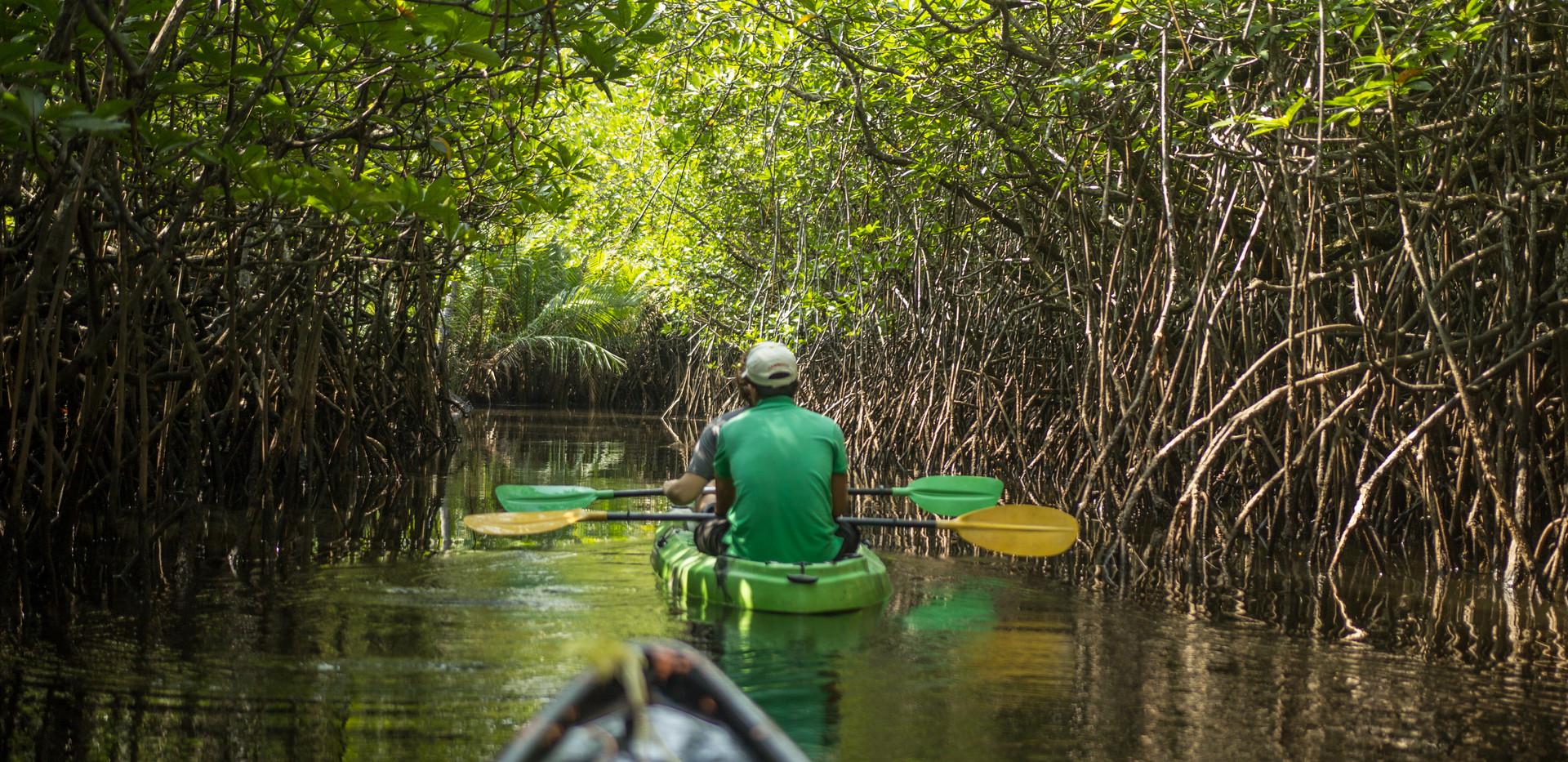 Thailand Yoga Holidays Destination River Resort Mangrove Boat Tour