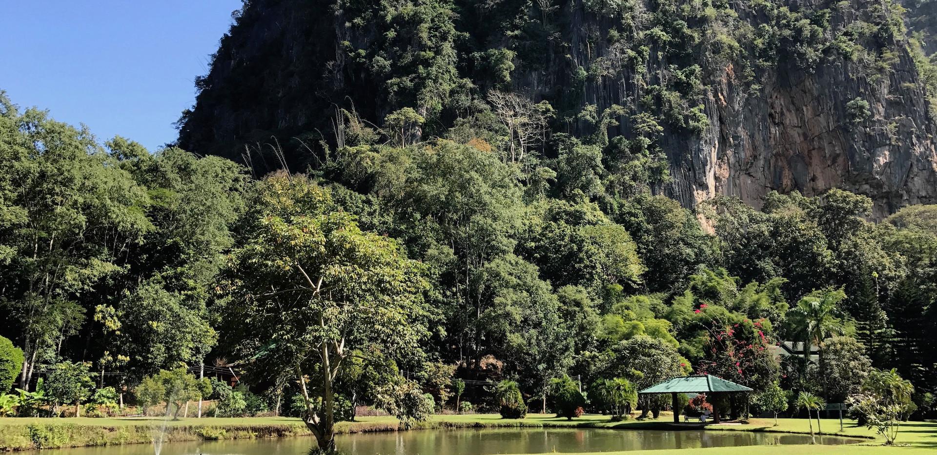 Thailand Yoga Holidays Destination Forest Meditation Center Pure Nature Surroundings
