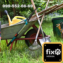 Jardinero | Fix Merida