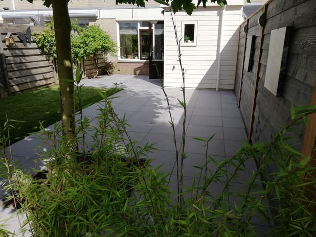 Elie Gardens 42