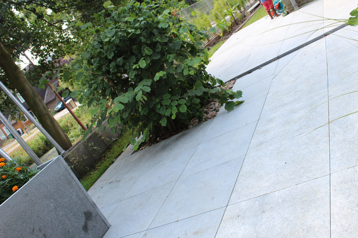 Elie Gardens 33