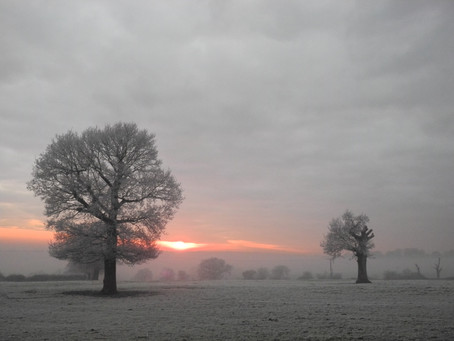 12 Frosty Morning Images in  Chipping Barnet – 12 December 2012