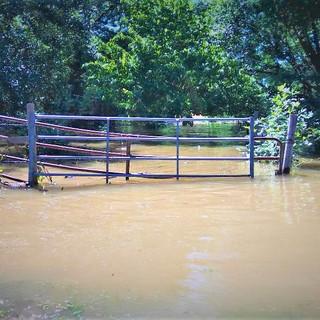 Gate Flooded.jpg