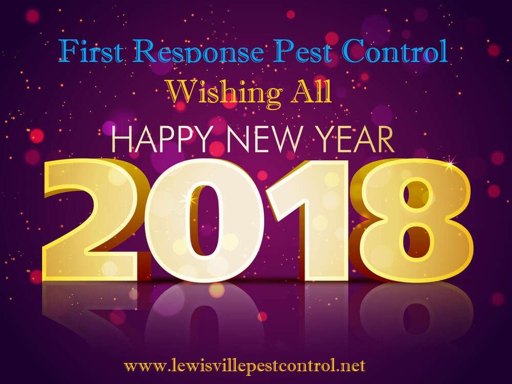 Do It Yourself Pest Control Tips Hy New Year First Response Services In Lewisville Texas