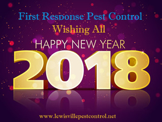 Do it Yourself Pest Control Tips-HAPPY NEW YEAR!
