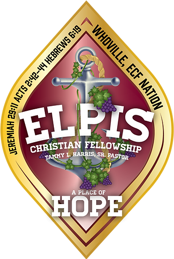 Elpis_Shield_126.png