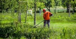 Grünanlagenpflege Hausmeister