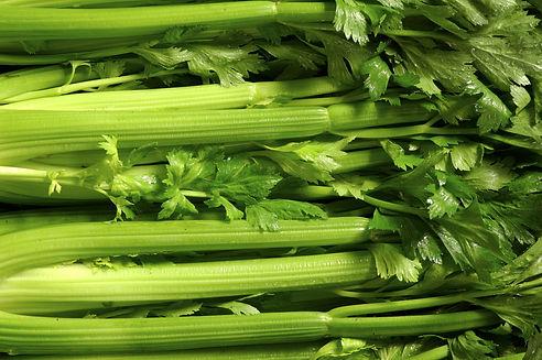 Fresh group of Celery.jpg