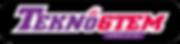 tekno 6tem logo 2.png