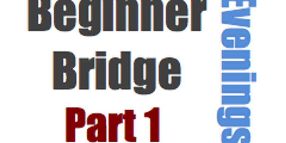 Bridge: Beginner, Part 1 (6 Mondays at 6:30pm)