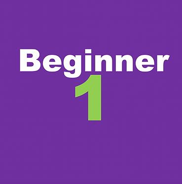 Beginner 1- The Basics (Apr-Mon & Wed 6:30pm)