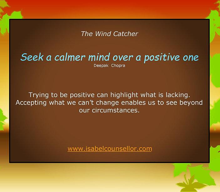 The Wind Catcher - 23-08-20 - Website.jp