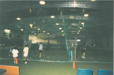 Batting Cage 3.png
