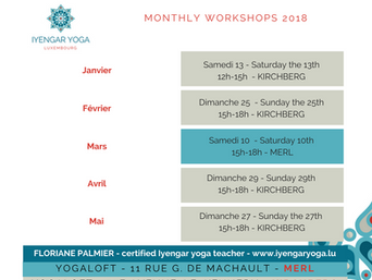 Next monthly workshop : Sunday 25th of February