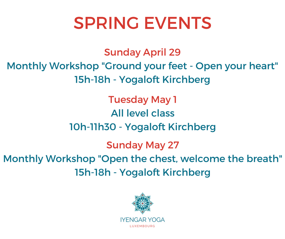 Iyengar Yoga Luxembourg- spring2018