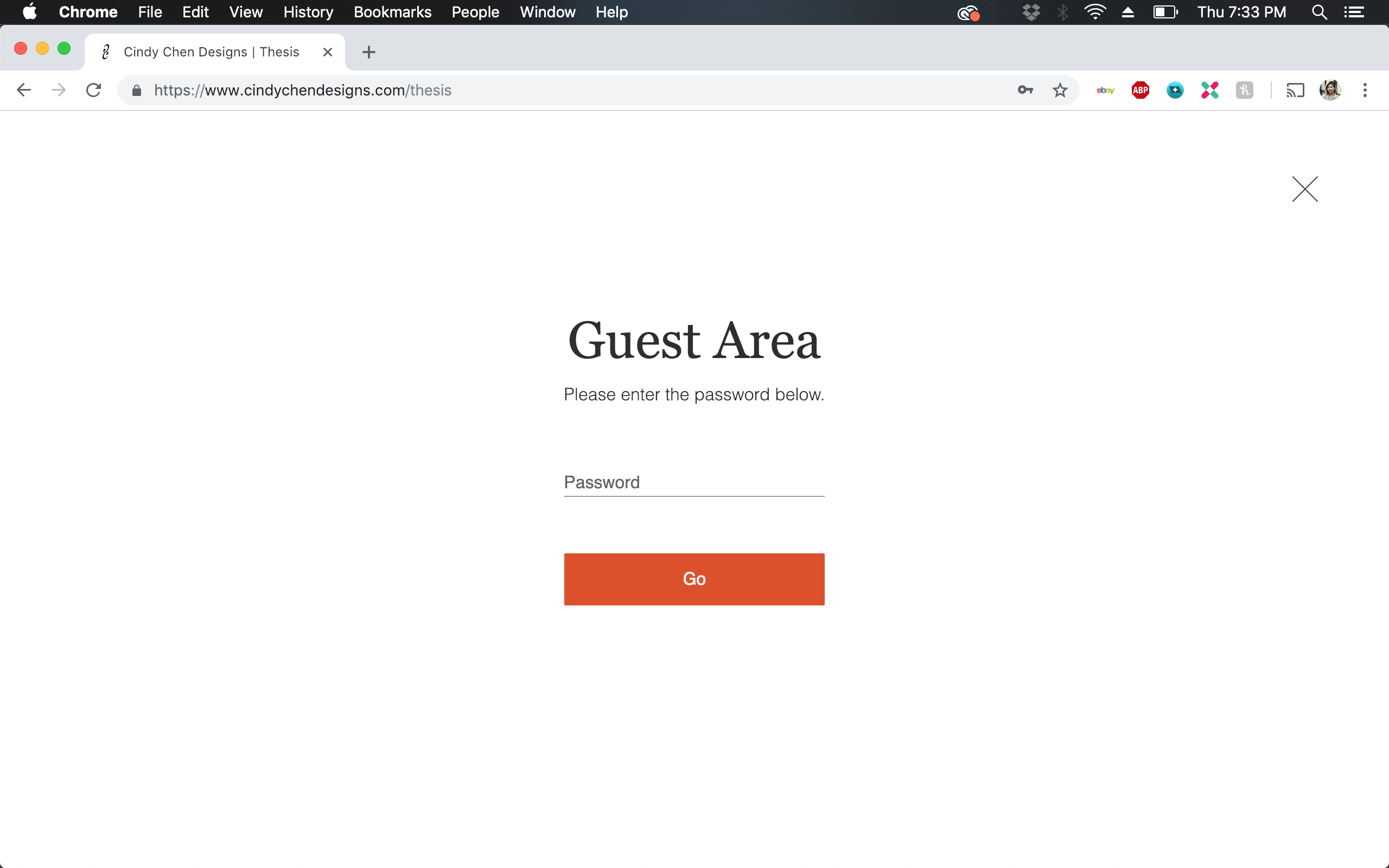 Password Locked Landing Page