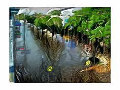 2017 flood molesworth st.jpg