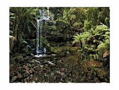 forest waterfall.jpg