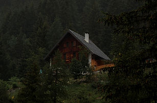 Huette-im-Wald_edited.jpg