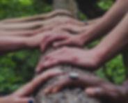 Gruppe-Baum-Haende.jpg