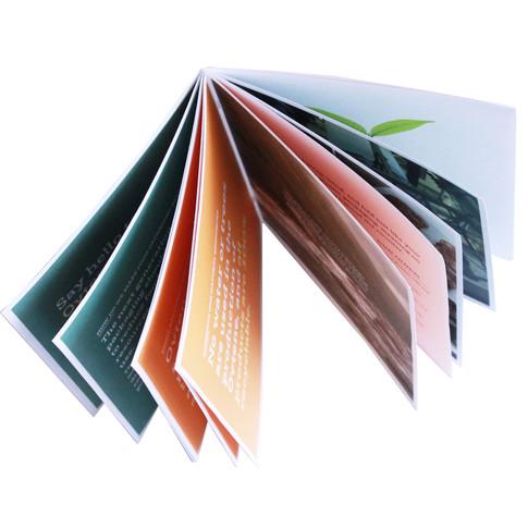 Ovtene Book Brochure