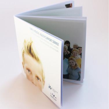 dss Book brochure