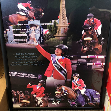 Voltaire Poster for Olympic Rider