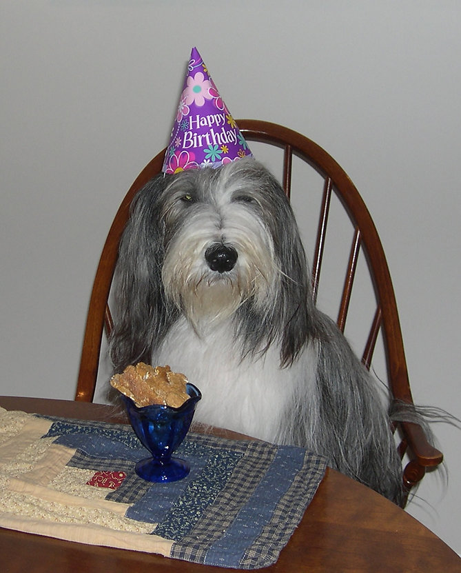 stormy-party-hat.JPG