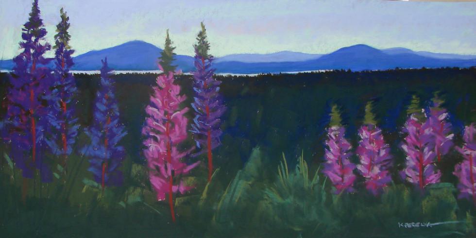 Eustis Ridge Lupine #2