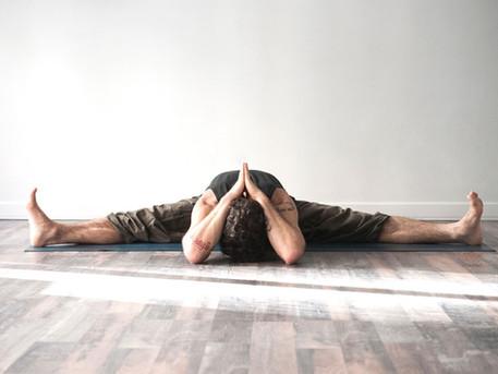 |6| The Yogic Path | Anatomia Olistica - sistema miofasciale